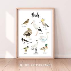 Birds | Downloadable Prints | Watercolor | Montessori Educational Poster for Kids | Children Room | Boys Girls Children Rooms | Learning Painting | Illustration | Swan | Stork | English