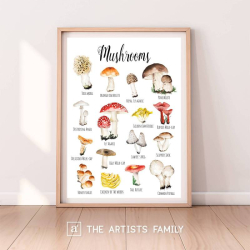 Mushrooms Toadstools | Downloadable Prints | Watercolor | Montessori Educational Poster for Kids | Children Room | Boys Girls Children Rooms | Learning Illustration | English