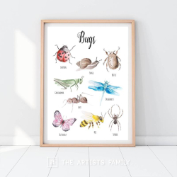 Bugs Insects | Downloadable Prints | Watercolor | Montessori Educational Poster for Kids | Children Room | Learning Painting | Beetle | Butterfly | Ladybug | English
