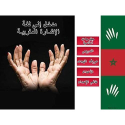 IDRT Introduction to Moroccan Sign Language | Accessible Product | Special Education  | Physical CD Format