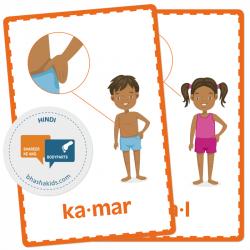 Hindi हिन्दी - Body Parts Flashcards   Bilingual Hindi - English Flashcards   Montessori Flash Cards   Hindi English Vocabulary Cards   Human Body   Teach Kids Hindi   Language Learning Market