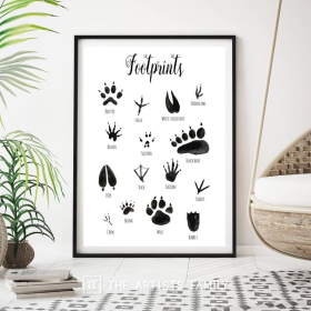 Animal Footprints | Downloadable Prints | Watercolor | Montessori Educational Poster for Kids | Children Room | Boys Girls Children Rooms | Learning Painting | Illustration | EnglishAnimal Footprints | Downloadable Prints | Watercolor | Montessori Educational Poster for Kids | Children Room | Boys Girls Children Rooms | Learning Painting | Illustration | English