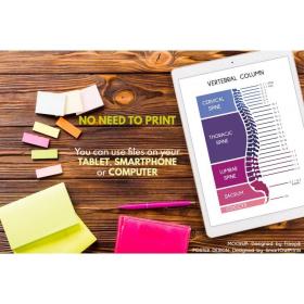 SPINE POSTER   Spinal Column   Human Spine   Anatomy Art   Vertebral Column   Medical Poster   Biology Home school   Print   Digital Download