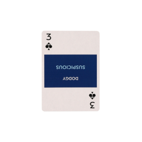 Learn Kiwi Slang Playing Cards   New Zealand Kiwi Travel Phrases   Original Paper Packing   New Zealand Flag   Game Set   Useful New Zealand - Kiwi English Phrases   Language Learning Market