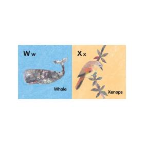 Amazing Animal Alphabet   English Alphabet Letters   Learn English ABCs   Brian Wildsmith   Paperback