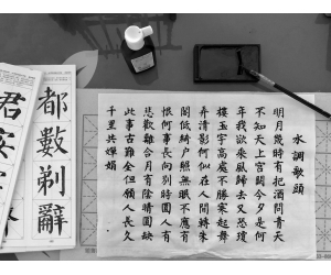 Finding Identity in Language Learning Chinese Growing up Bilingual